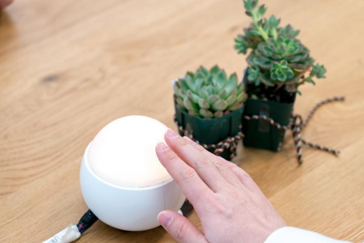 Famileelのプロトタイプ「たまちゃん」。触りたくなる温かみや可愛さを考えて設計されている。のサムネイル画像